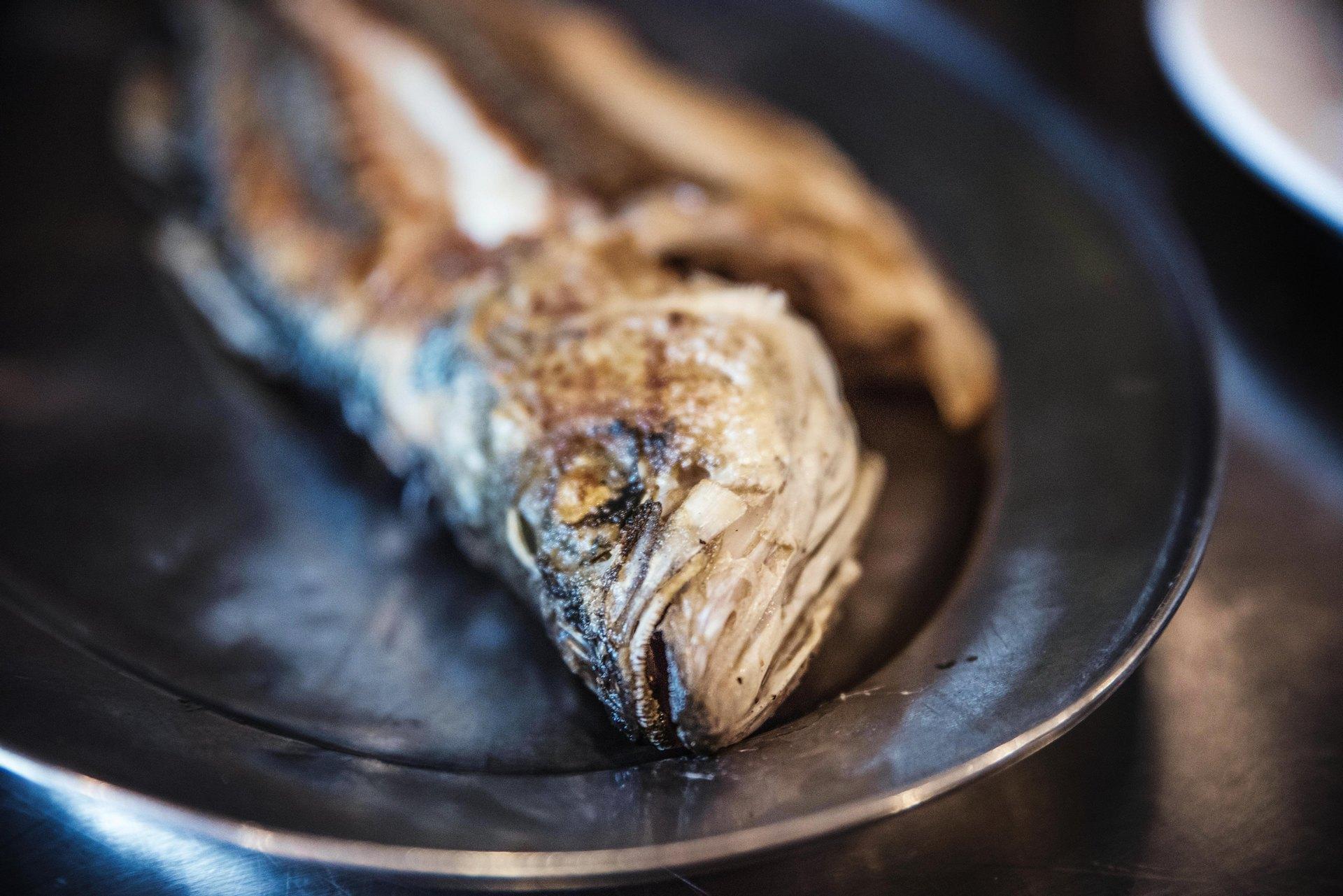Il Pastaio Restaurant | Fish-1815085863